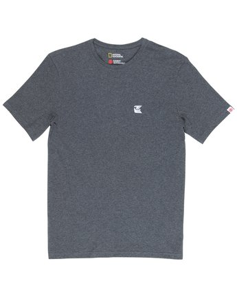2 Soar Tee Grey M406VESA Element