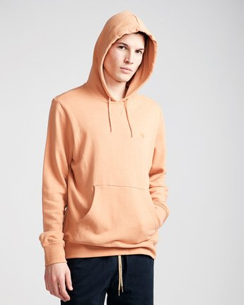 1 Cornell French Terry Pullover Hoodie Brown M606TECF Element