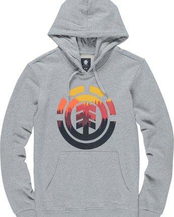4 Glimpse Icon Ho - Fleece for Men Grey N1HOA7ELP9 Element