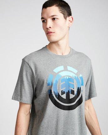 1 Glimpse Icon Ss - Tee Shirt for Men Grey N1SSA4ELP9 Element