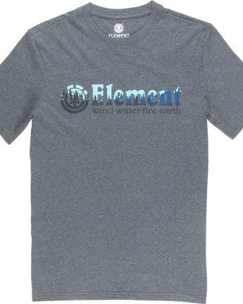 4 Glimpse Horizontal S - Tee Shirt for Men Grey N1SSA7ELP9 Element
