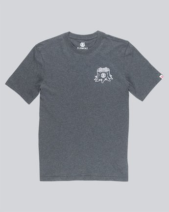 4 Stump Ss - Tee Shirt for Men Grey N1SSC2ELP9 Element