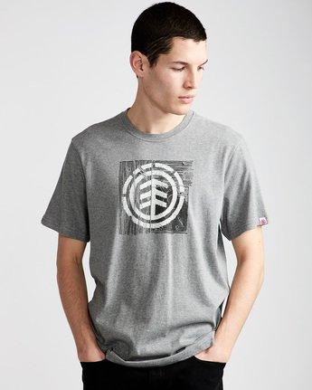 0 Driftwood Ss - Tee Shirt for Men Grey N1SSC5ELP9 Element
