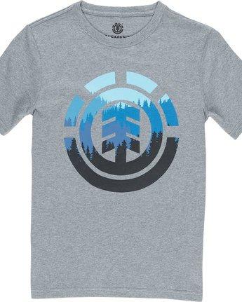 1 Glimpse Icon Ss Boy - Tee Shirt for Boys Grey N2SSA2ELP9 Element