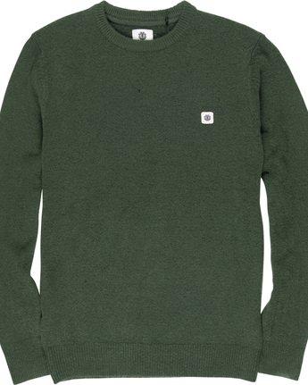 4 Danny - Pullover für Männer Grün Q1JPA2ELF9 Element