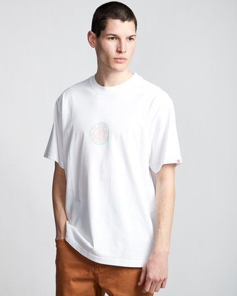 Dotted - T-Shirt  Q1SSC2ELF9