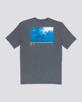 4 Current - T-Shirt  Q1SSF6ELF9 Element