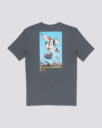 4 Soar - T-Shirt Grey Q1SSF9ELF9 Element