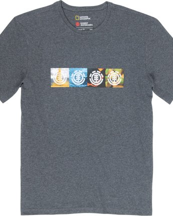 4 Horizontal Seasons - T-Shirt Grey Q1SSG2ELF9 Element