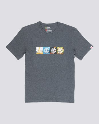 3 Horizontal Seasons - T-Shirt Grey Q1SSG2ELF9 Element
