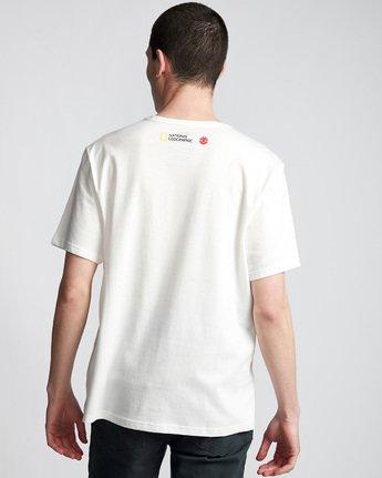 2 Horizontal Seasons - T-Shirt White Q1SSG2ELF9 Element