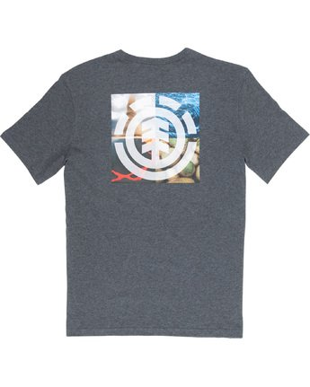 6 Quadrant Seasons - T-Shirt Grey Q1SSG3ELF9 Element