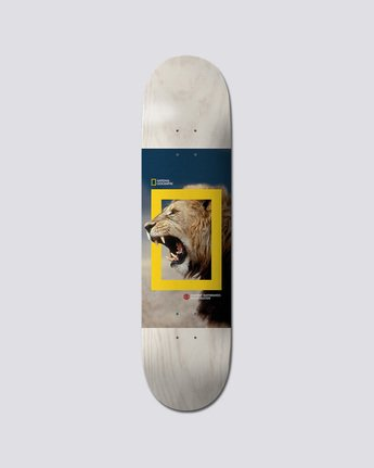 Nat Geo Nyjah Lion 8 - Deck for Men Q4DCA1ELF9