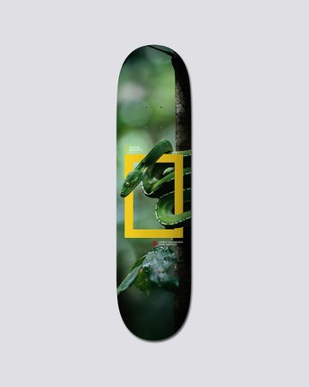 Nat Geo Julian Snake - Deck  Q4DCA2ELF9