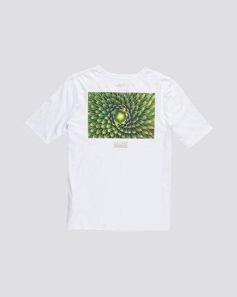 1 Nat Geo - T-Shirt manches courtes en coton biologique pour Femme Blanc S3SSA7ELP0 Element