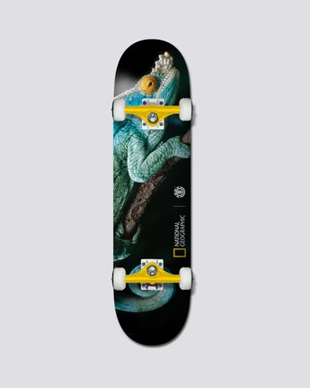 "National Geographic 8"" Nat Geo Iguana - Skateboard  S4CPB3ELP0"