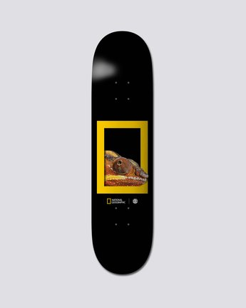 "National Geographic 8.25"" Nat Geo Dragon - Skate Decks  S4DCB3ELP0"