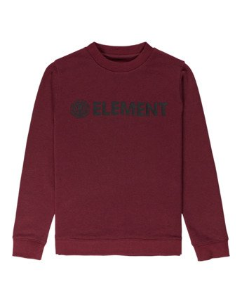 Blazin - Sweatshirt for Boys  U2CRA2ELF0