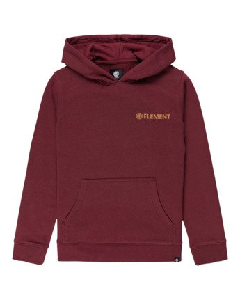 Blazin Chest - Hoodie for Boys  U2HOA4ELF0