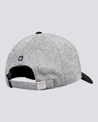 2 Wild - Snapback Cap for Men Grey U5CTA2ELF0 Element