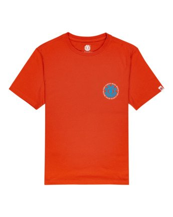 Seal - T-Shirt for Boys  W2SSD2ELP1