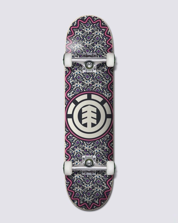 0 Paisel Complete Skateboard  ALYXW00108 Element