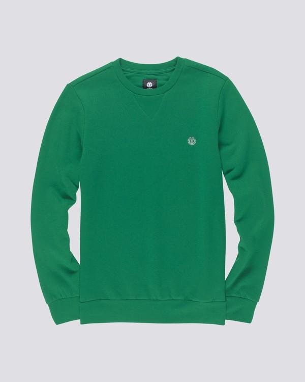 0 Cornell Classic - Sweatshirt for Men Green L1CRA1ELF8 Element