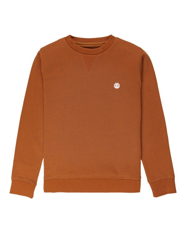0 Cornell Classic - Sweatshirt for Boys Beige Z2CRB6ELF1 Element