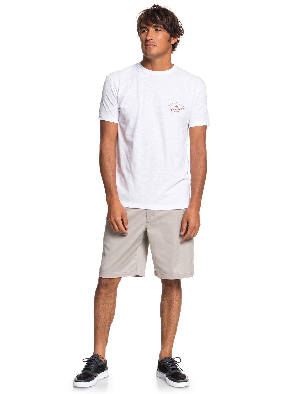 380d83253365f 1 Waterman Aztec Fish - T-Shirt for Men White EQMZT03145 Quiksilver