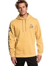 8ad73b845e90 Mens Sweatshirts & Best Hoodies for Guys | Quiksilver