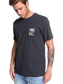 0c29d01fbd82 Mens Tees - Tees for Guys | Quiksilver