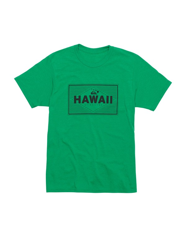 0 Boys 8-16 Gravy All Over T-Shirt  AQBZT00496 Quiksilver