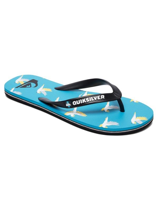 0 Molokai Cockatoo Flip-Flops Black AQYL100831 Quiksilver