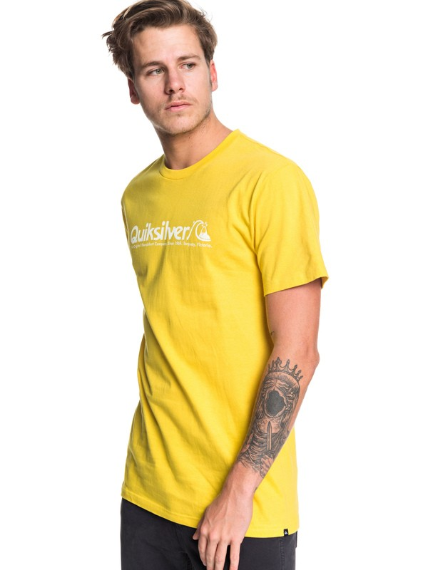 0 Modern Legends Tee Green AQYZT06176 Quiksilver