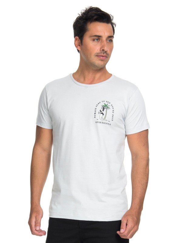 0 Camiseta Glad You´re Back Quiksilver Cinza BR61241622 Quiksilver