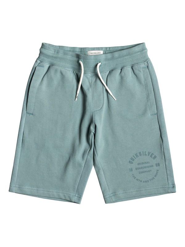 0 Детские спортивные шорты Everyday Синий EQBFB03072 Quiksilver