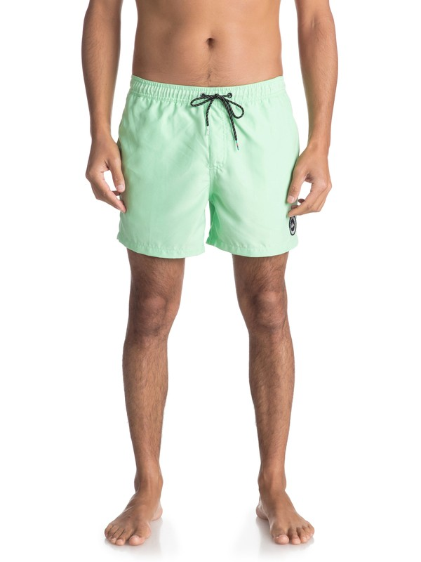 "0 Everyday 15"" Swim Shorts Green EQYJV03318 Quiksilver"