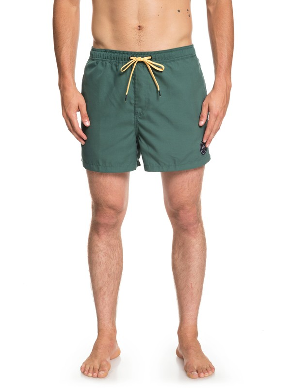 "0 Everyday 15"" Swim Shorts Green EQYJV03407 Quiksilver"