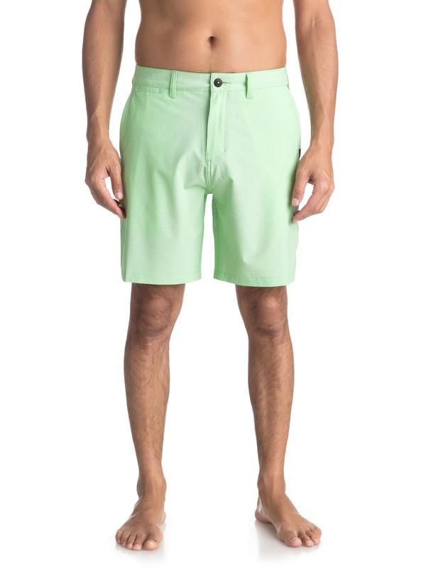 "0 Union Pinstripe 19"" - Board Shorts Anfibio para Hombre Verde EQYWS03490 Quiksilver"