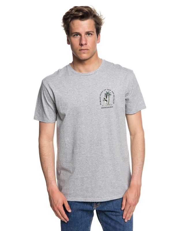 0 Glad You're Back - T-shirt col rond pour Homme Gris EQYZT05019 Quiksilver