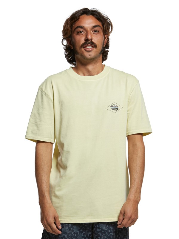 0 Inside Out Tee Yellow EQYZT05376 Quiksilver