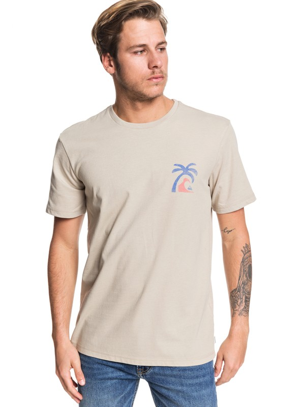 0 Lonely Palm Tee Brown EQYZT05445 Quiksilver