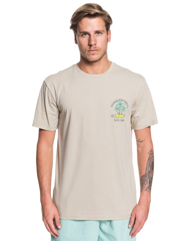 0 Above The Up Tee Brown EQYZT05446 Quiksilver