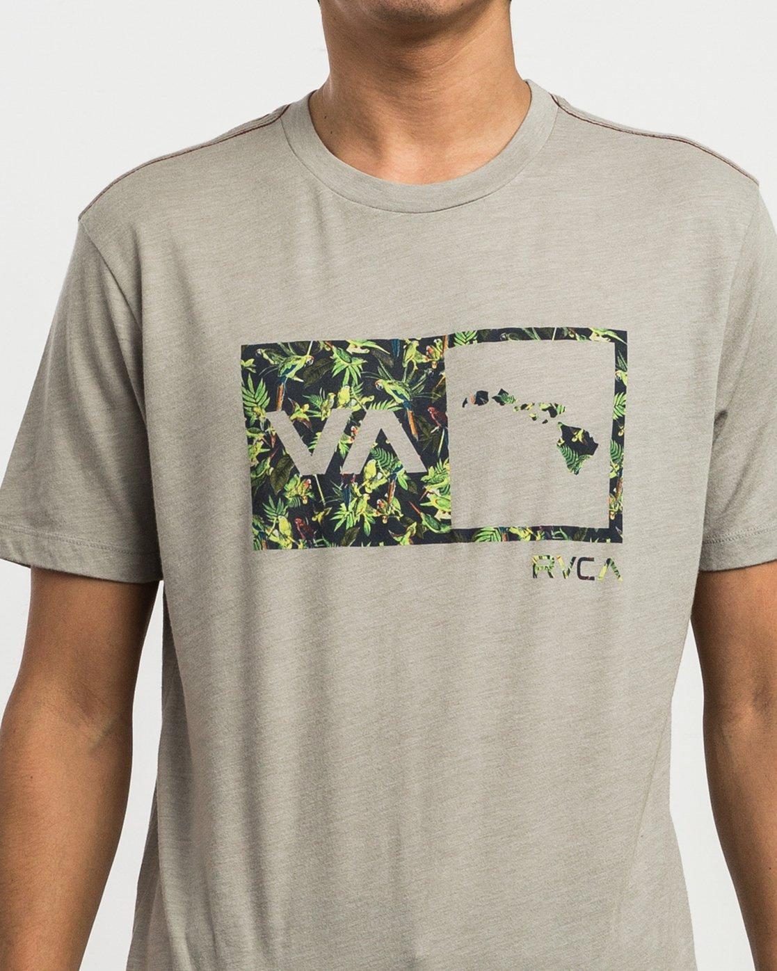 4 Squawker Islands Balance Box T-Shirt Multicolor M420SRSS RVCA