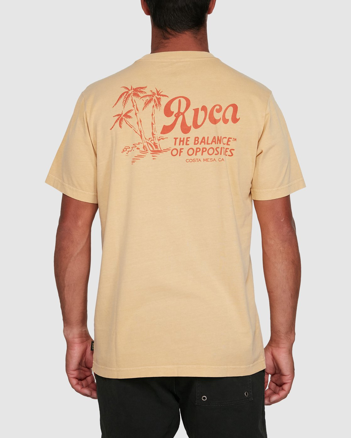 0 TROPICAL DISASTER SHORT SLEEVE TEE  R105054 RVCA