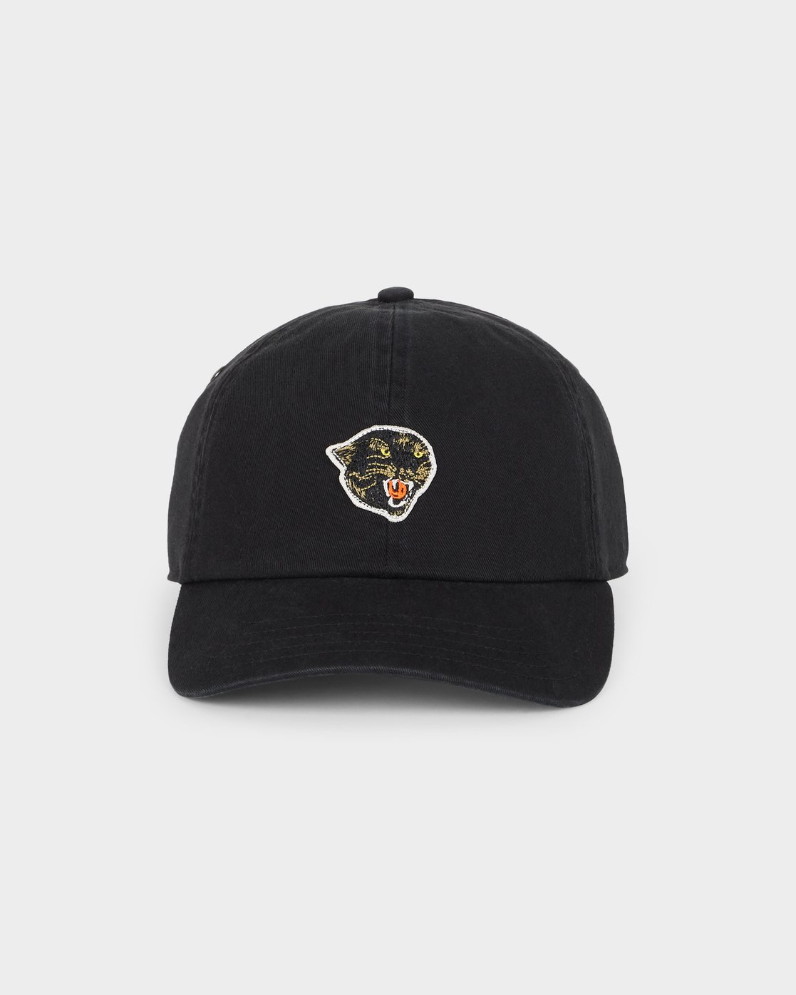 1 PANTHER DAD HAT  R491561 RVCA