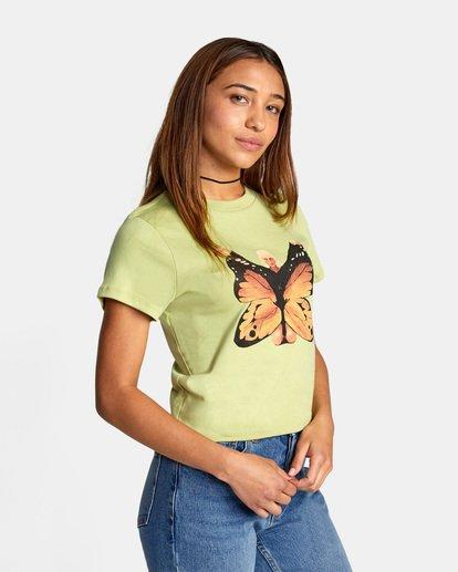 7 Dana Trippe Dana Butterfly Short Sleeve Tee Green AVJZT00258 RVCA