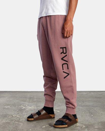 3 BIG RVCA PANT Purple AVYFB00111 RVCA