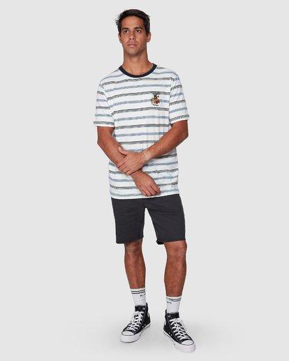 5 Aloha Stripe Short Sleeve Tee  R107061 RVCA