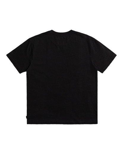 1 Pennant - T-shirt pour Homme Noir Z1SSRYRVF1 RVCA